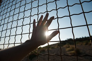 male human hand touching fence cage